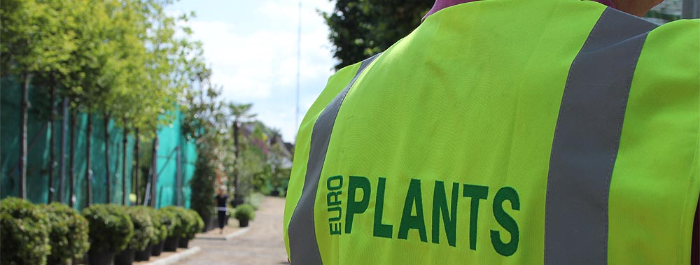 Europlants UK Ltd